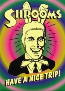 shrooms1-215x300